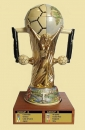 King 2014 International Soccer Championship Special